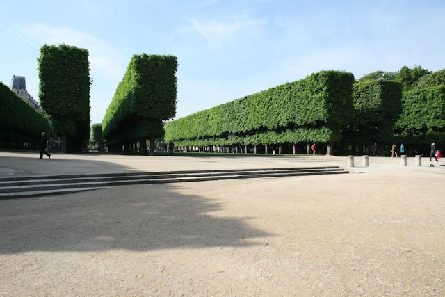 manicured trees in jardin du luxembourg